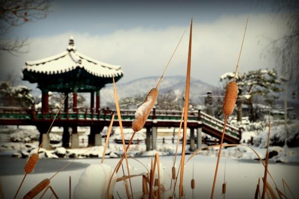 Cattail Pagoda